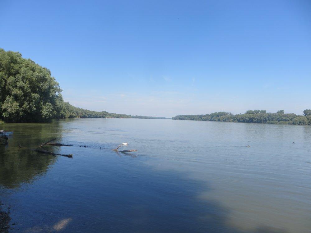 Donau bei Aljmas, irgendwo hinten unsichtbar die Drau