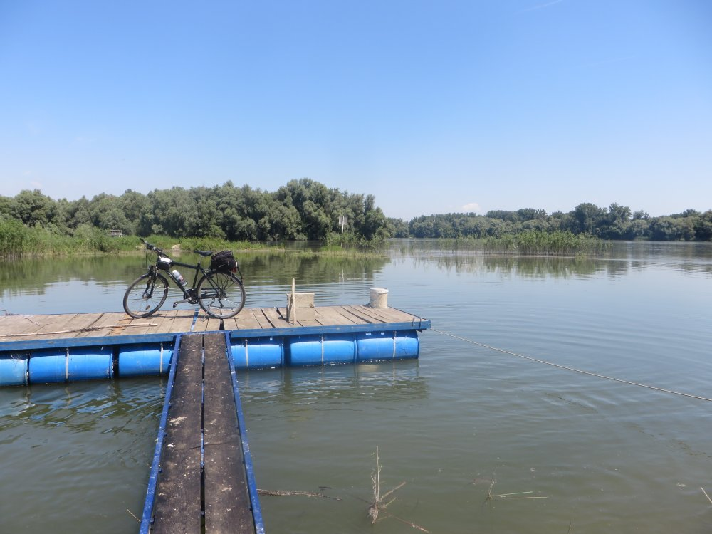 Kaum zu sehen: vor den Bäumen links hinten die Drau, vor den Bäumen rechts die Donau